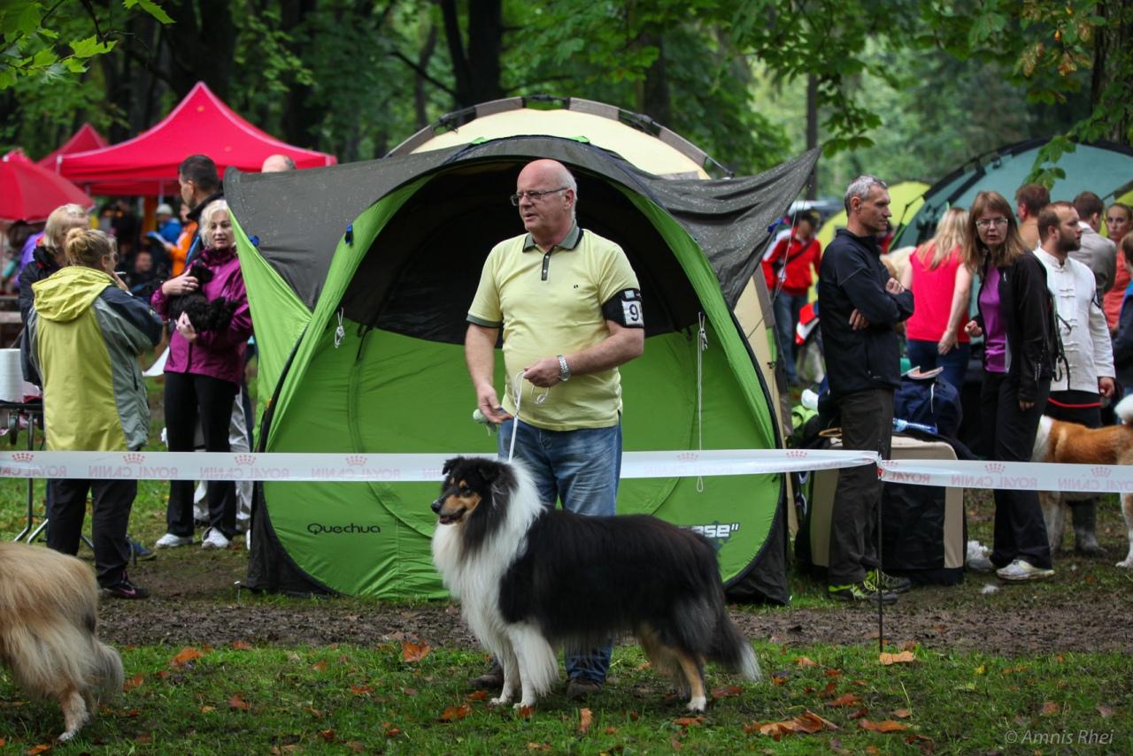 Torrent National Dog Show